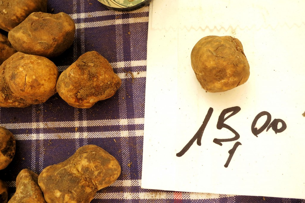 buying truffles in Tuscany