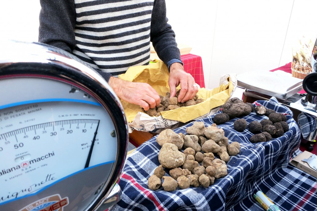 white truffles from San Miniato