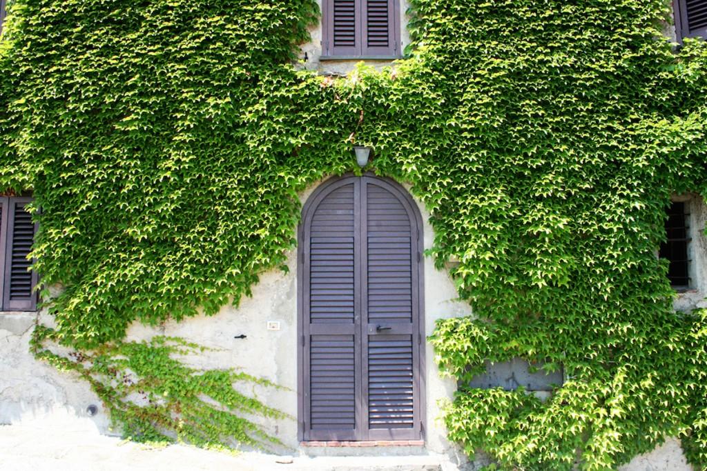 Castiglione della Pescaia Maremma doors