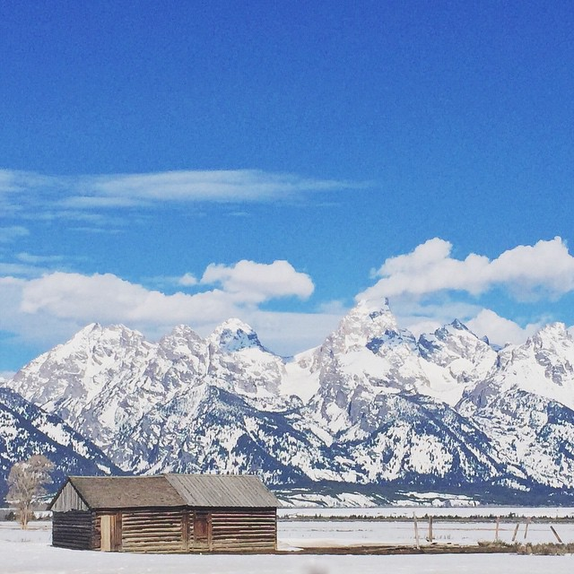 The Mormons from Idaho settled here in the 1890's. They had the best views of the Tetons, don't ya think? #cabinfever #jacksonhole