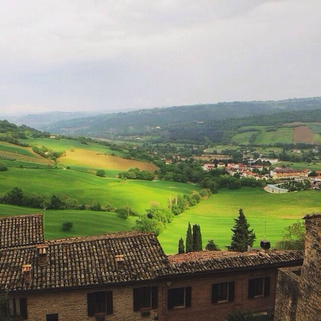[Serra San Quirico] This land is hyper-green in the sun. #exploringmarche3 #whatitalyis