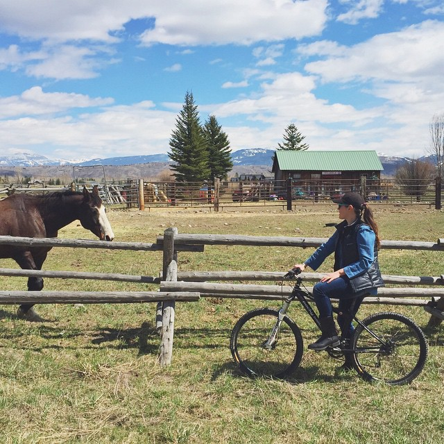 Ride a horse or ride a bike, just ride #bicichic #westisbest #denimondenim