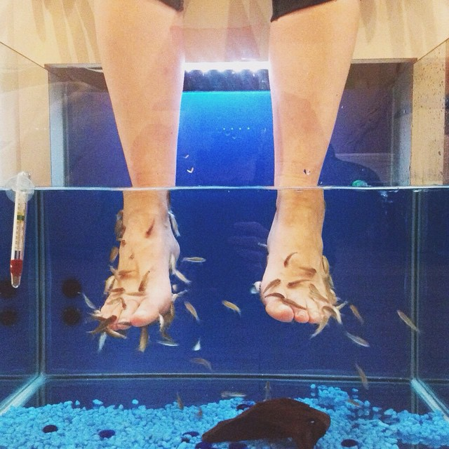 Yes, this happened. Up on tianakai.com read the 4 easy steps to a fish pedi in Florence...it's not for everyone! #florencetip #spaday