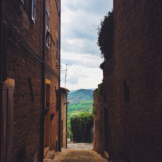 Discovering the countryside of Le Marche from Cupramontana. #exploringmarche3